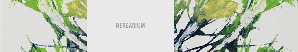 Le projet HERBARIUM